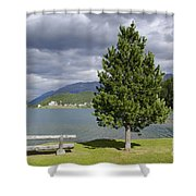 Bench And Tree Shower Curtain