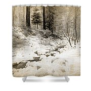 Bench By Creek Shower Curtain
