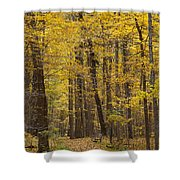 Bench In Fall Color Shower Curtain