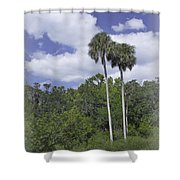 Benched At Rainbow Springs Campground Shower Curtain