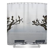 Benches And A Trees Shower Curtain