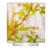 Beneath A Tree  14 5194  Diptych  Set 2 Of 2 Shower Curtain by Ulrich Schade