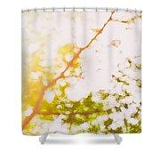 Beneath A Tree  14 5199  Diptych  Set 2 Of 2 Shower Curtain by Ulrich Schade