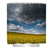 Beneath The Gloomy Sky Shower Curtain