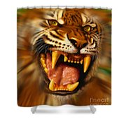 Bengal Shower Curtain