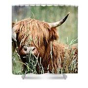 Bent Horn Long Horn Shower Curtain