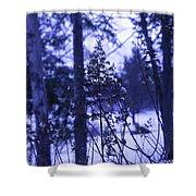 Berkshires Winter 8 - Massachusetts Shower Curtain