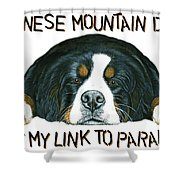 Bernese Mountain Dog Paradise Shower Curtain