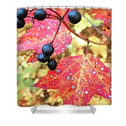 Berries And Leaves Shower Curtain