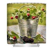 Berries Shower Curtain by Darren Fisher