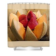 Berry Bowl Shower Curtain