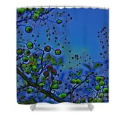 Berry Sky Magic By Jrr Shower Curtain