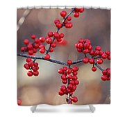 Berry Sparkles Shower Curtain