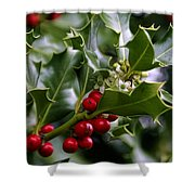 Best Of Holidays Shower Curtain