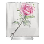 Betsy's Rose Shower Curtain