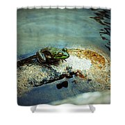 Between A Frog And A Hard Place Shower Curtain