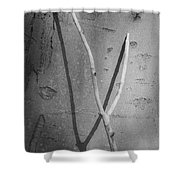 Between Black And White-09 Shower Curtain