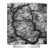 Between Black And White-16 Shower Curtain