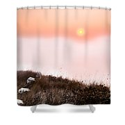 Between Rocks And The Sunrise Shower Curtain