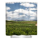 Between The Vines Shower Curtain