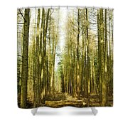 Betweenthe Trees Shower Curtain