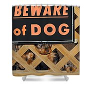 Beware Of Dog Shower Curtain by John Dauer