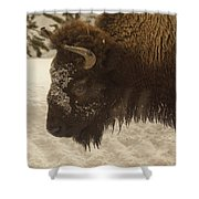 Beware Of The Bison Shower Curtain