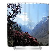 Beyond The Rhododendrons 2 Shower Curtain