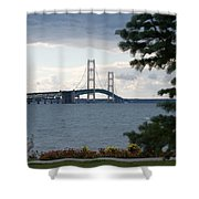 Beyond The Tree Shower Curtain