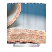 Bibliophile Shower Curtain