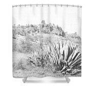 Bidwell Park Cactus Shower Curtain