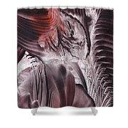Big-bang Glimmer Shower Curtain