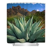 Big Bend Century Plant Shower Curtain
