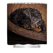 Big Black Toad Shower Curtain