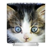 Big Blue Eyes Shower Curtain
