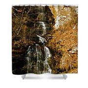 Big Bradley Falls 4 Shower Curtain