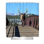 Big Bull On The Bridge Shower Curtain