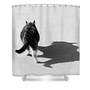Big Cat Ferocious Shadow Monochrome Shower Curtain by James BO  Insogna