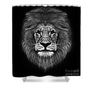 Big Cats 12 Shower Curtain