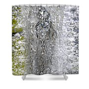 Big Chill Water Angel Shower Curtain