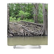 Big Cypress River Trees Shower Curtain