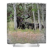 Big Daddy The Moose 1 Shower Curtain