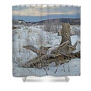 Big Delta Riverbed Shower Curtain