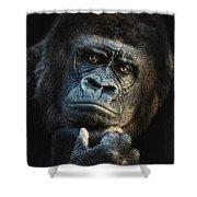 Big Dreamer Shower Curtain by Joachim G Pinkawa