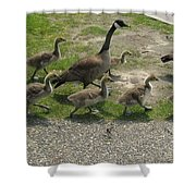Big Family Crossing The Road Shower Curtain