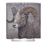 Big Horn Ram Shower Curtain