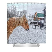 Big Horse  Little Horse Shower Curtain by Skye Ryan-Evans