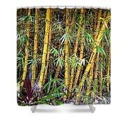 Big Island Bamboo Shower Curtain