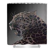 Big Kitty Kitty Shower Curtain