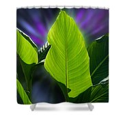 Big Leaves Shower Curtain